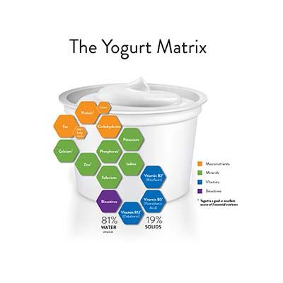 Yogurt Matrix